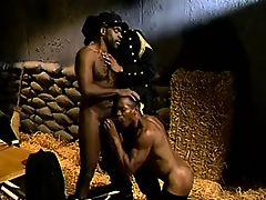 Черный сержант гей трахает молодых солдат в сарае