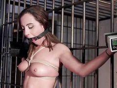 Связали и подвергли пыткам в тюрьме